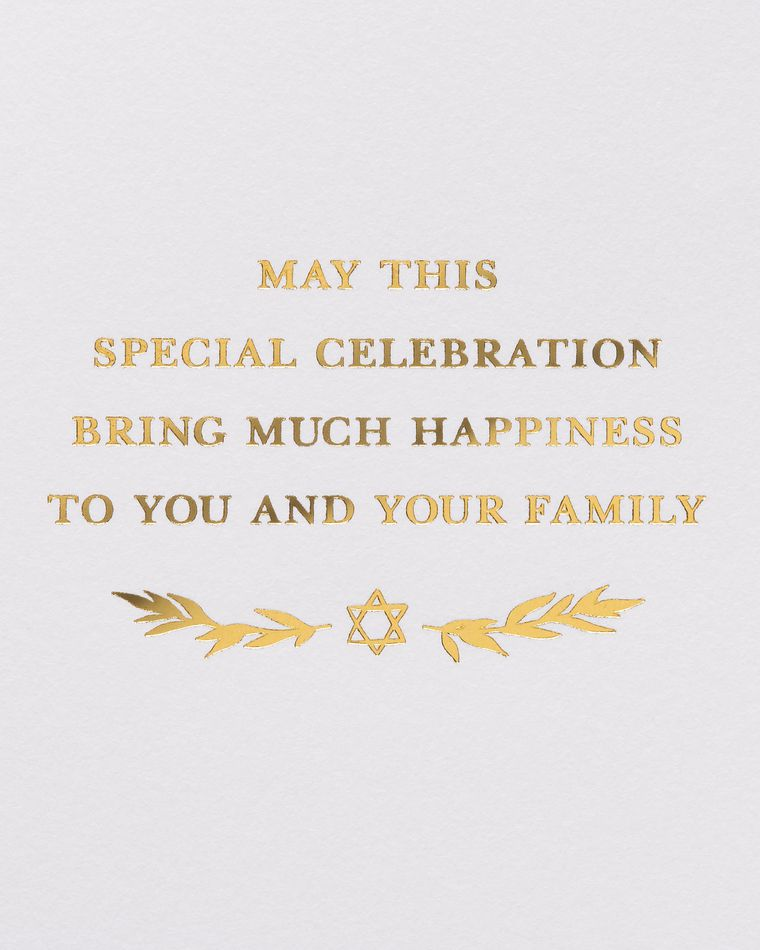 Special Celebration Passover Greeting Card