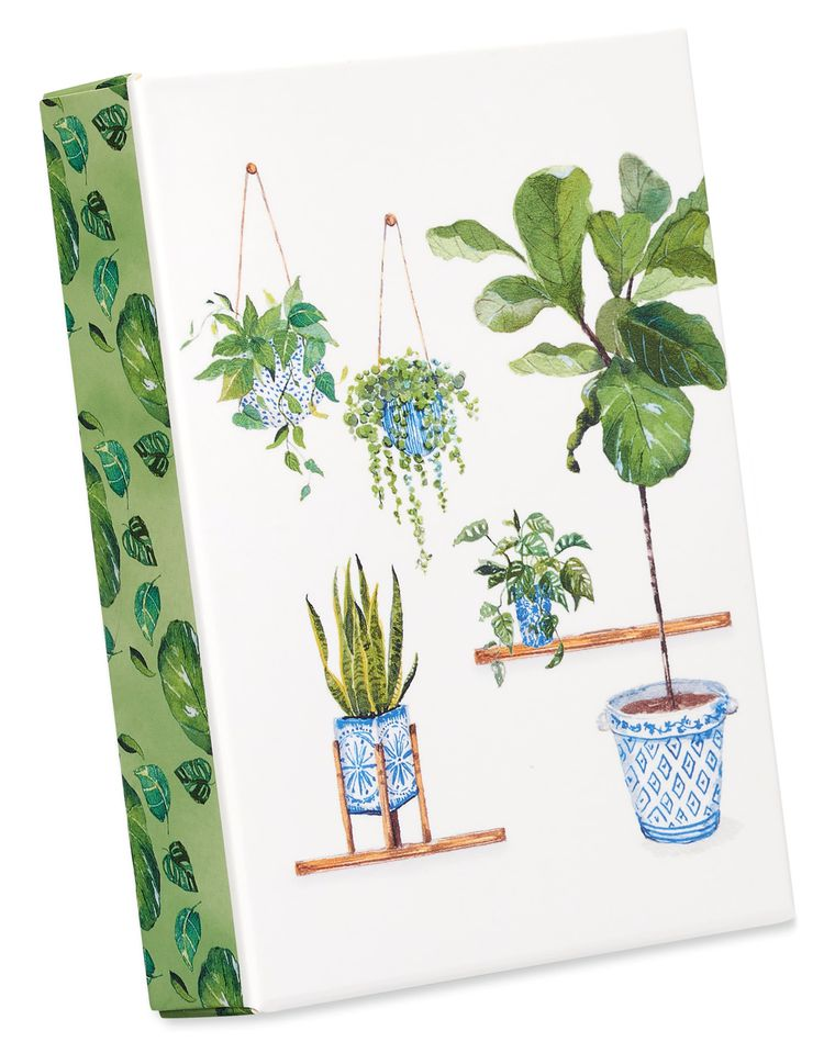 Indoor Garden Boxed Blank Note Cards with Envelopes, 14-Count