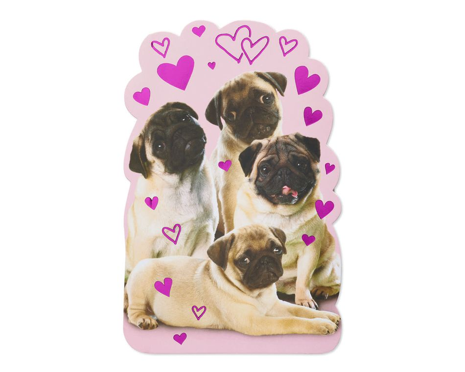 Pugs Valentine's Day Card