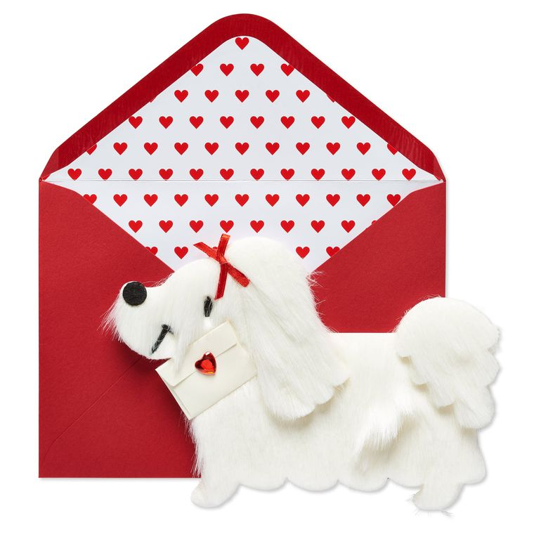 White Fur Dog Valentine's Day Greeting Card