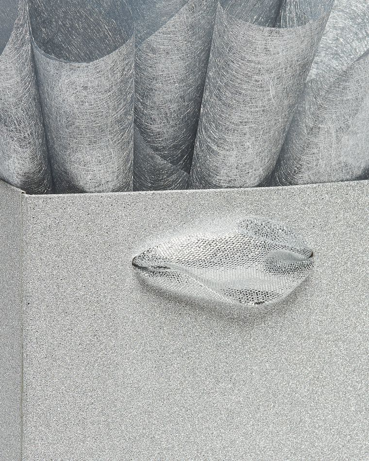 Silver Glitter Beverage Gift Bag with Silver Fiber Tissue Paper, 1 Gift Bag and 4 Sheets of Tissue Paper