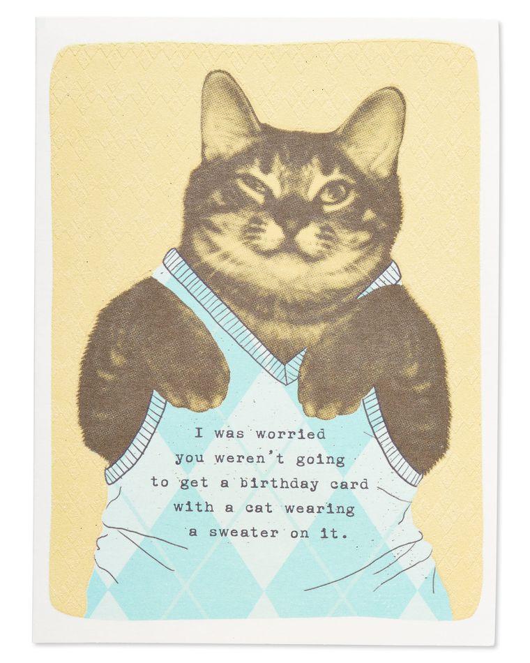 sweater vest cat
