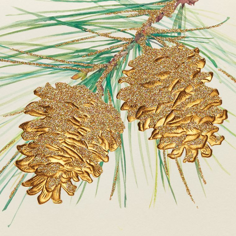 Pine Cones Holiday Boxed Cards, 14-Count
