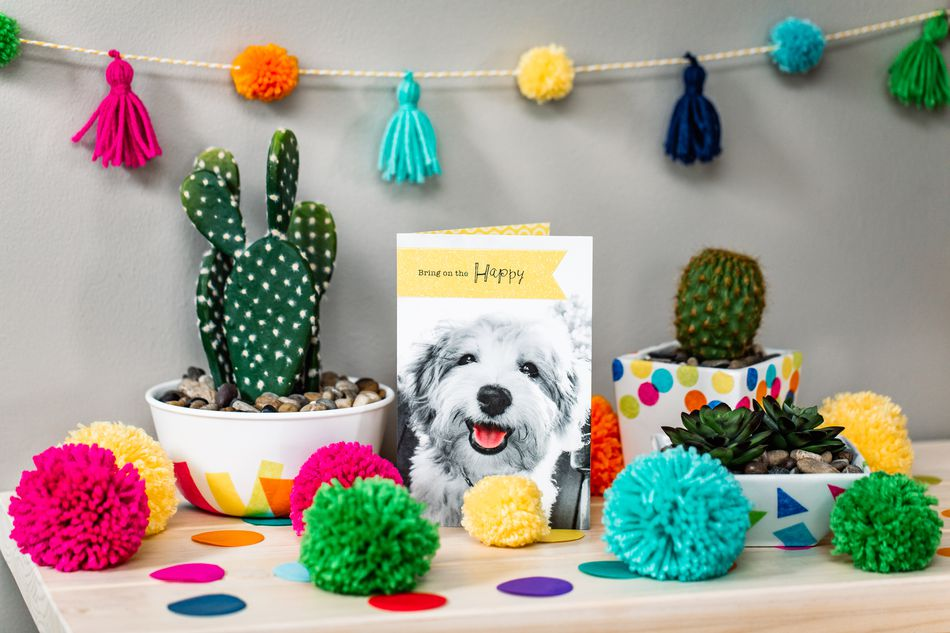 Puppy Birthday Card Lifestyle Image