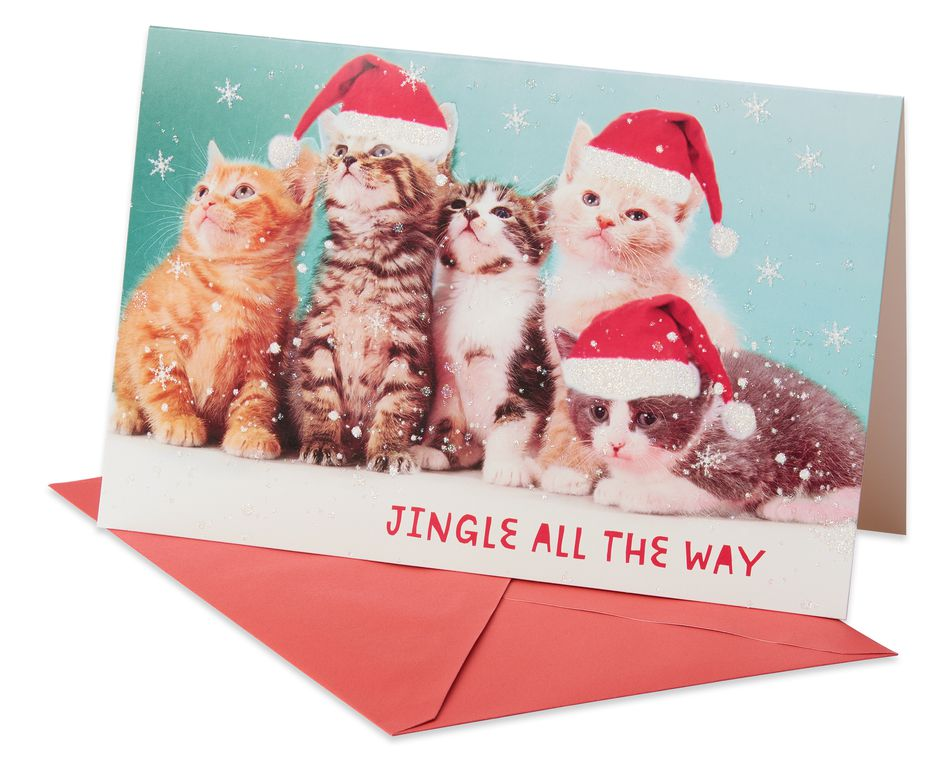 Deluxe Kitten Christmas Boxed Cards and Red Envelopes, 14-Count