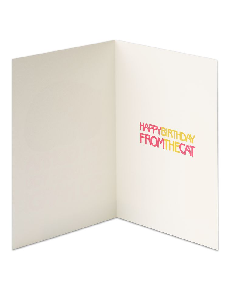 Snuggle Birthday Card From Cat American Greetings