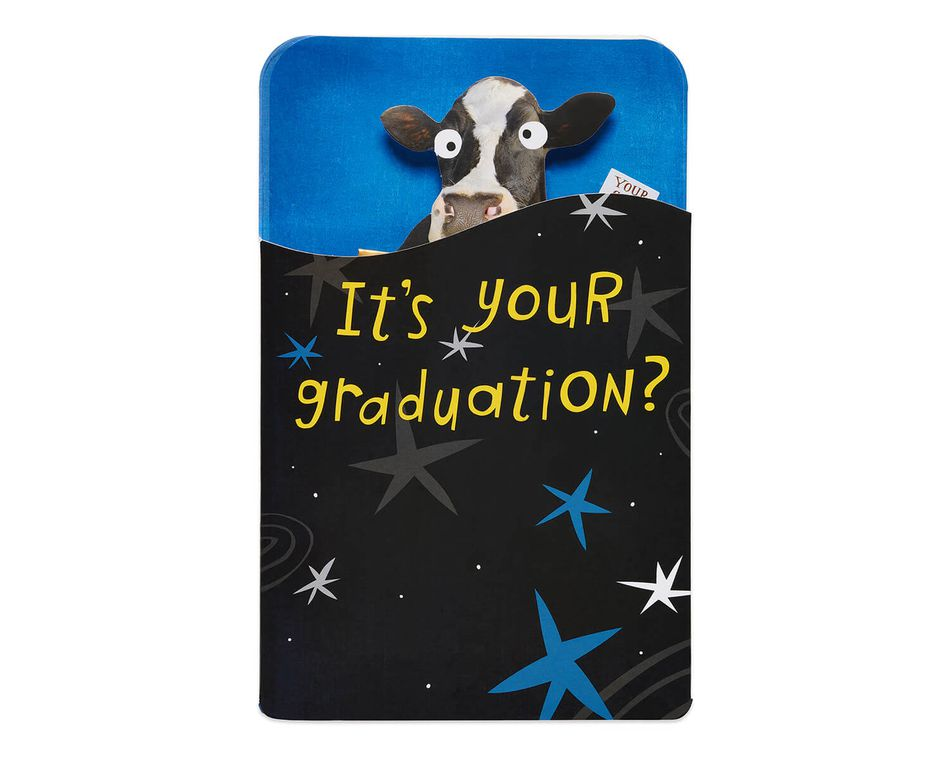 Cow Graduation Card