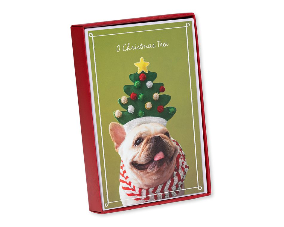 Dog Christmas Card Photo.Deck The Dog Christmas Boxed Cards 14 Count