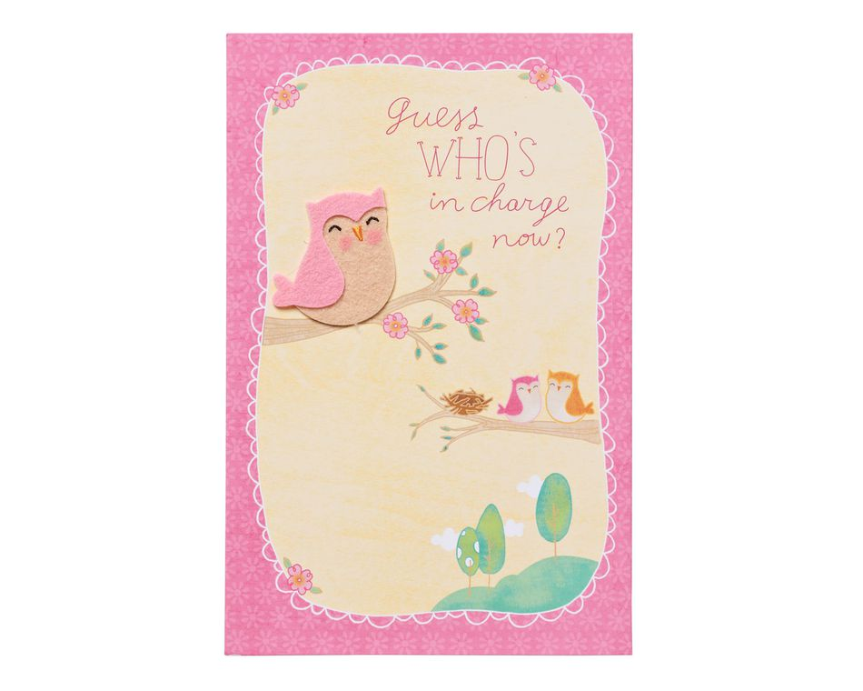 whos in charge now new baby congratulations card