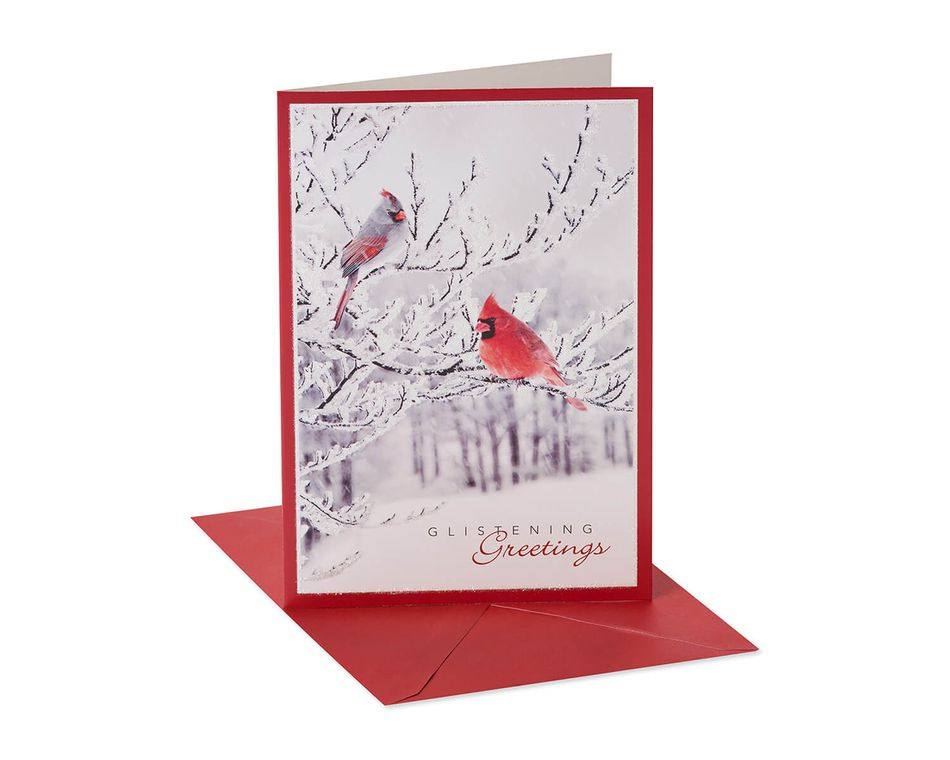 Black White and Red Cardinal Christmas Boxed Cards and White Envelopes, 12-Count
